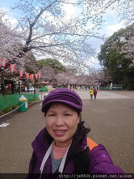 0323上野公園89.jpg