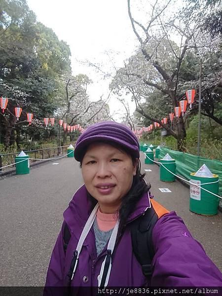 0323上野公園88.jpg