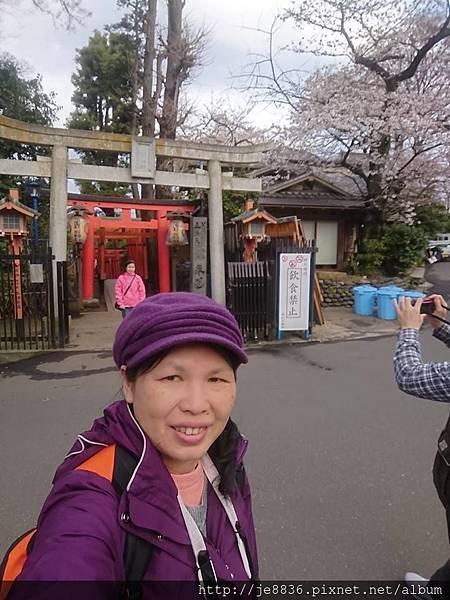 0323上野公園91.jpg