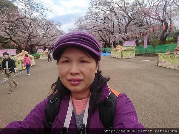0323上野公園93.jpg