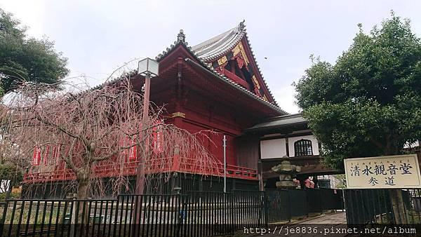 0323上野公園97.jpg