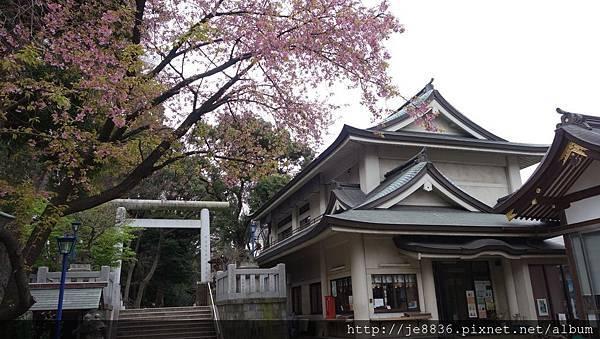 0323上野公園~不忍池8.jpg