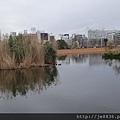 0323上野公園~不忍池17.jpg