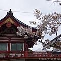 0323上野公園~不忍池24.jpg