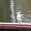 0323上野公園~不忍池34.jpg