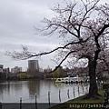 0323上野公園~不忍池41.jpg