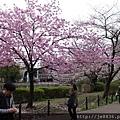 0323上野公園~不忍池54.jpg