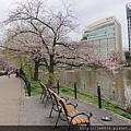 0323上野公園~不忍池67.jpg