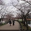 0323上野公園~不忍池70.jpg