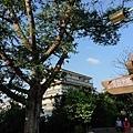 0331樂活公園32.jpg