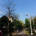 0331樂活公園33.jpg