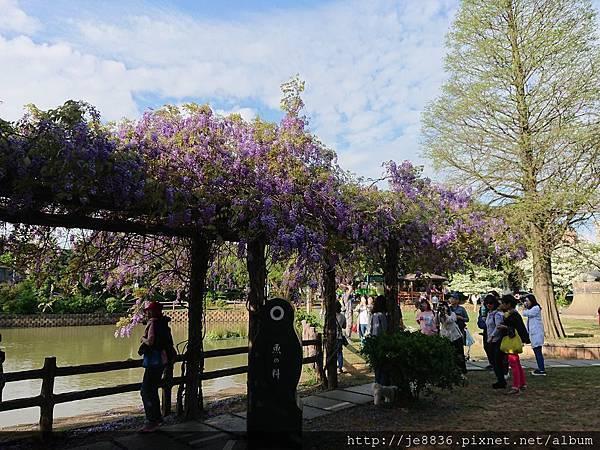 0330大湖公園4.jpg