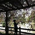 0330大湖公園6.jpg