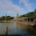 0330大湖公園11.jpg