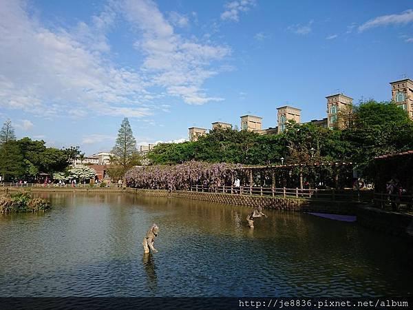 0330大湖公園13.jpg