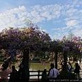 0330大湖公園26.jpg