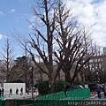 0323靖國神社5.jpg
