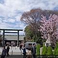 0323靖國神社6.jpg