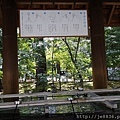 0323靖國神社9.jpg