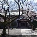 0323靖國神社14.jpg