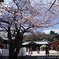 0323靖國神社19.jpg