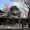 0323靖國神社26.jpg