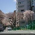 0323靖國神社42.jpg