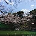 0323靖國神社51.jpg