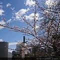 0323靖國神社54.jpg