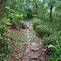 0424新林步道7.jpg