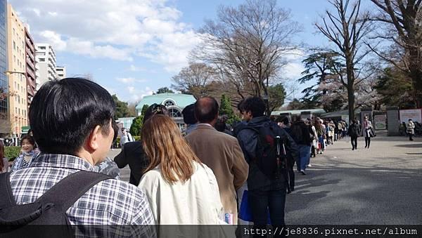0323新宿御苑5.jpg