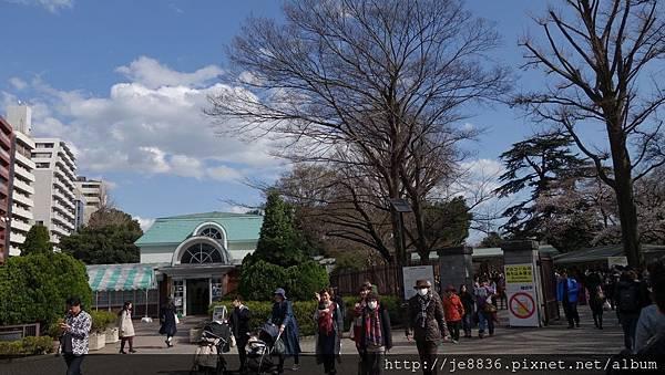 0323新宿御苑6.jpg