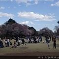 0323新宿御苑23.jpg