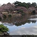 0323新宿御苑33.jpg