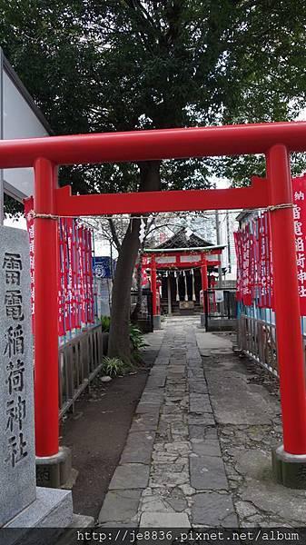 0323新宿御苑70.jpg