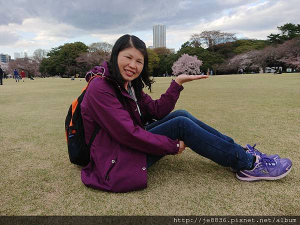 0323新宿御苑111.jpg