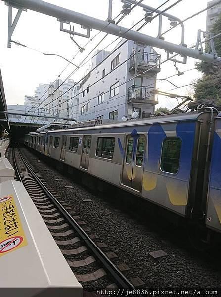0323目黑川賞櫻2.jpg