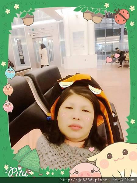 0323羽田機場  (13).jpg