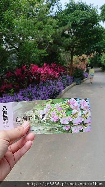 0513關西花鳥園 (4).jpg