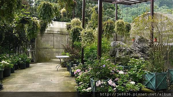 0513關西花鳥園 (5).jpg