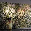 0513關西花鳥園 (15).jpg