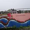 0404彩色海芋39.jpg