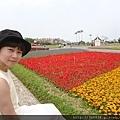 0404彩色海芋52.jpg