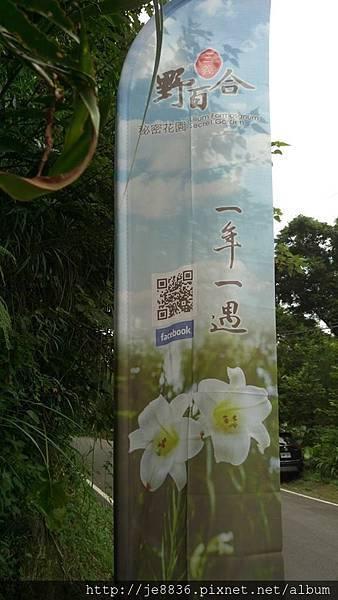 2017野百合祕密花園1.jpg