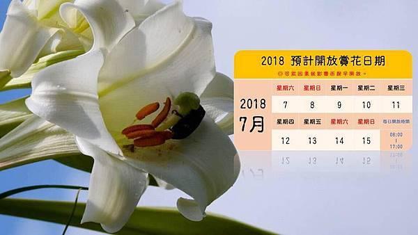 2017野百合祕密花園57.jpg