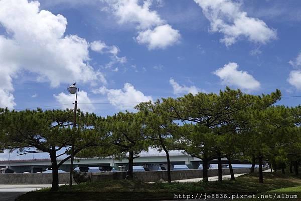 0719若狹碼頭~波上宮 (9).jpg