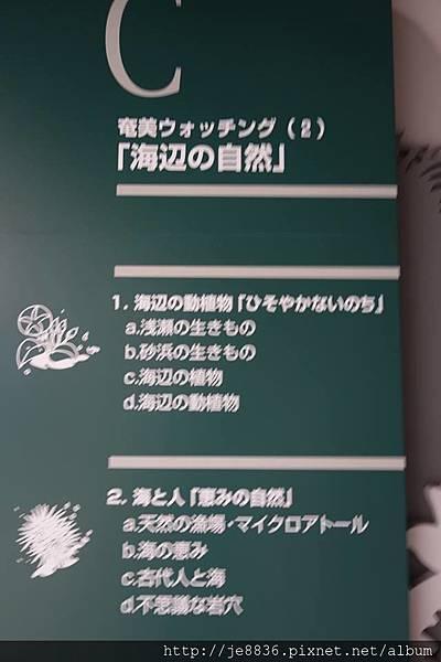 0720奄美海洋館 (43).jpg