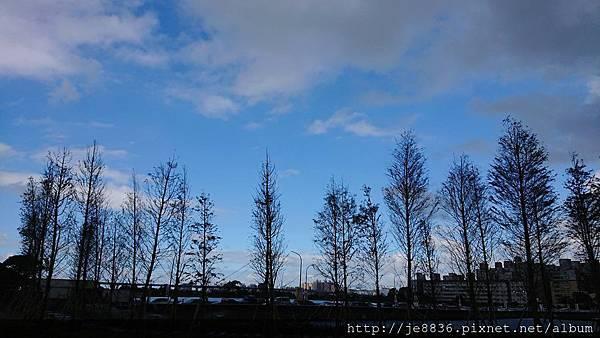 1104莊敬大池4.jpg