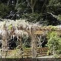 0304雪霸農場59.jpg