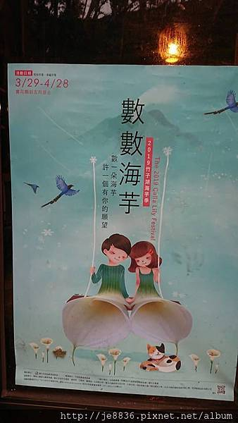 0324海芋季38.jpg